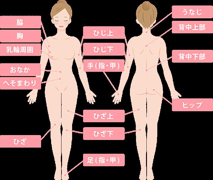 グロウクリニック渋谷院の全身脱毛の対応部位