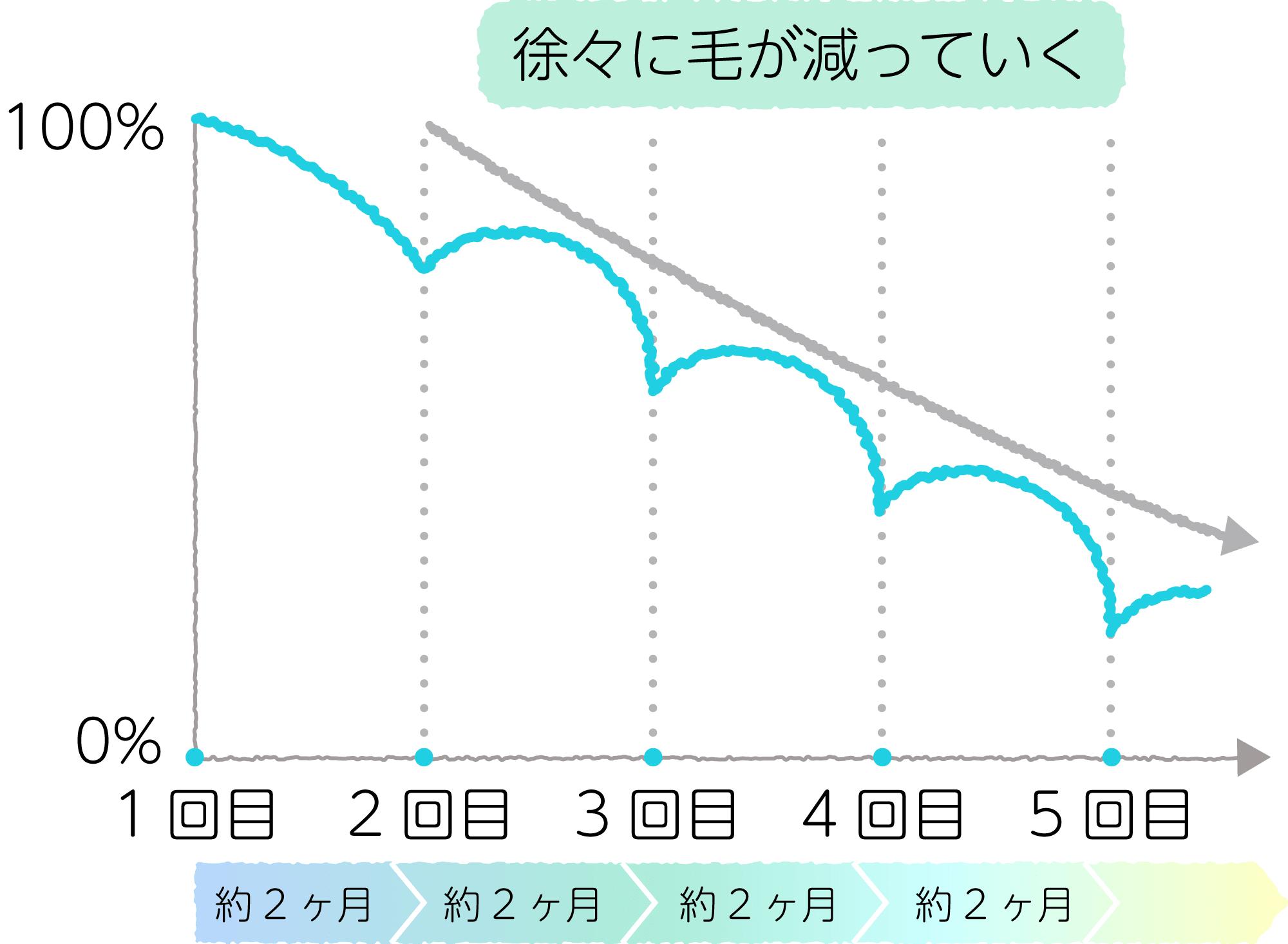 医療脱毛により毛が減る経過のグラフ