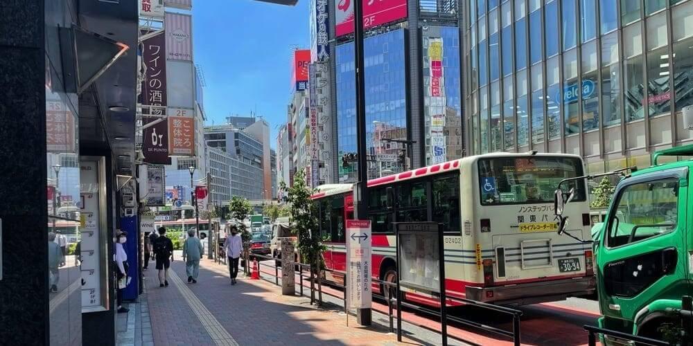 東京メトロ・都営地下鉄新宿西口駅D5出口の左手の歩道