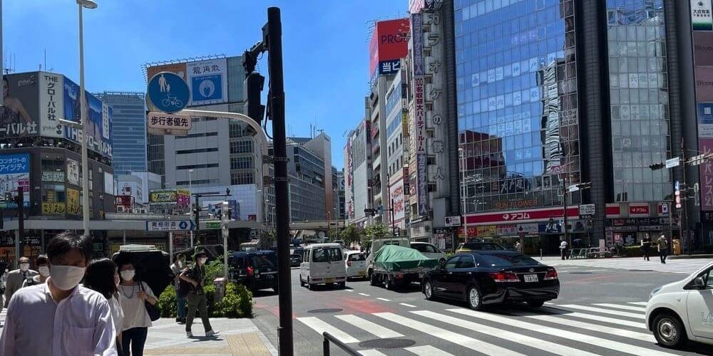 東京メトロ・都営地下鉄新宿西口駅D5出口の左手の歩道を進むと右手に出てくる横断歩道